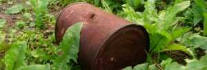 Garden Clearance in Caversham